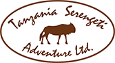 About Tanzania | Tanzania Serengeti Adventure